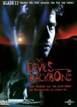 Devils Backbone, The
