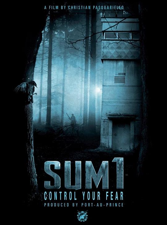 2014_SUM1_Teaser
