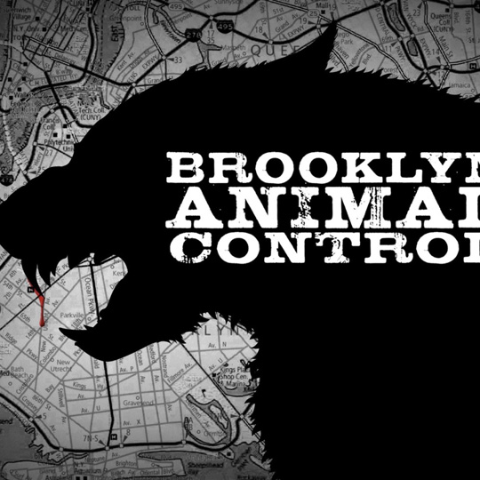 brooklyn-animal-control-splash-1000x1000