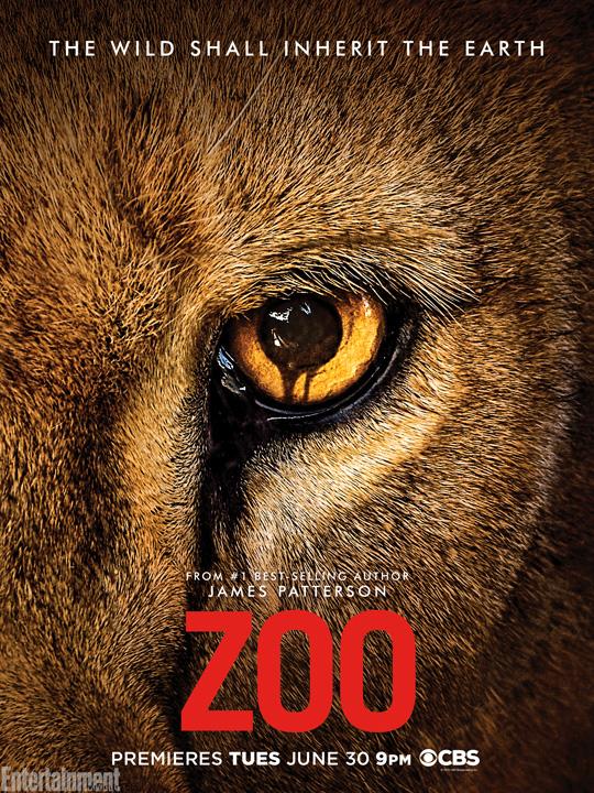Sorgte 2015 und 2016 für Unheil: Zoo