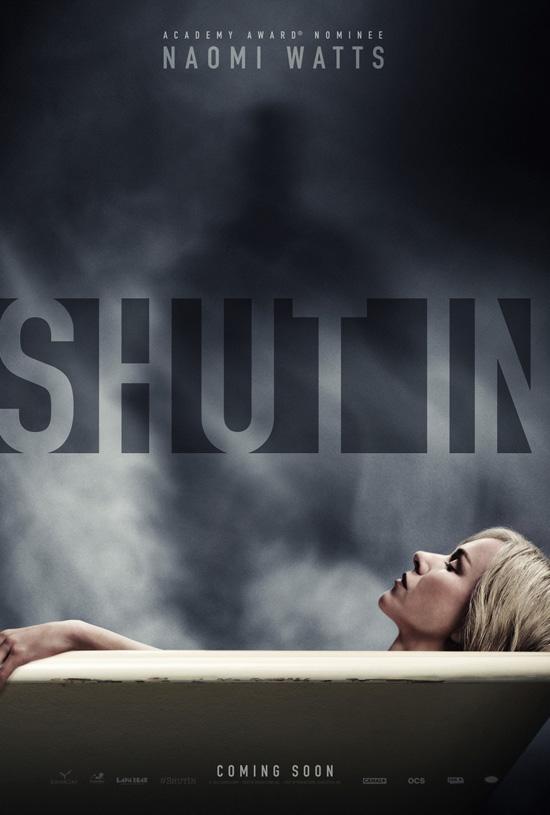shut_in_xlg