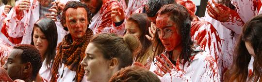 RAW – Blutige Diät: Französischer Kannibalenfilm bald im deutschen Handel