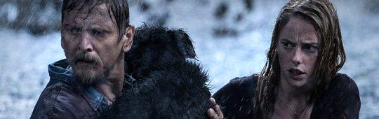 Crawl 2 – Neuer Film, andere Tiere? Alexandre Aja für Fortsetzung zu haben